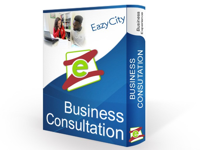 Business Consultancy (open a business)